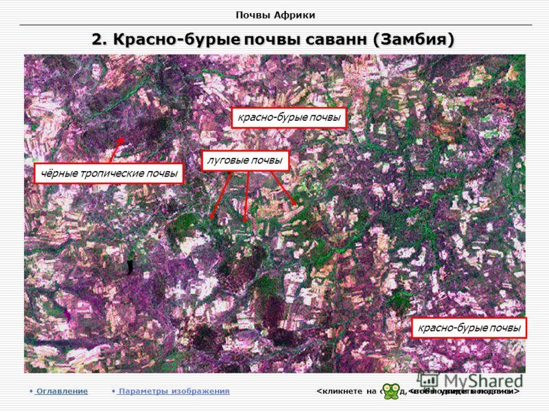Почвы Африки 2. Красно-бурые почвы саванн (Замбия) Оглавление Оглавление Параметры изображения красно-бурые почвы чёрные тропические почвы красно-бурые почвы луговые почвы