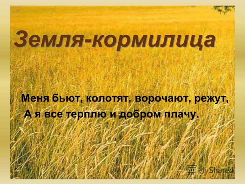 Земля-кормилица Меня бьют, колотят, ворочают, режут, А я все терплю и добром плачу.