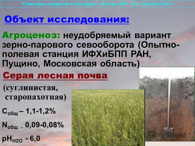 Объект исследования: Серая лесная почва (суглинистая, старопахотная)