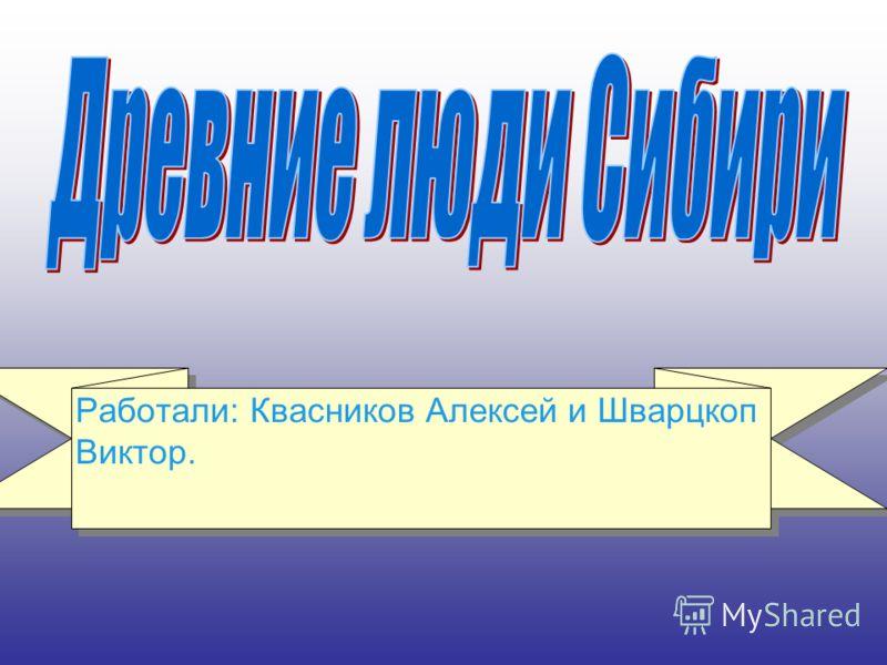 Работали: Квасников Алексей и Шварцкоп Виктор.