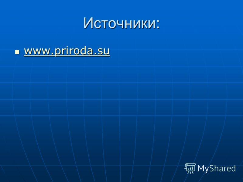 Источники: www.priroda.su www.priroda.su www.priroda.su