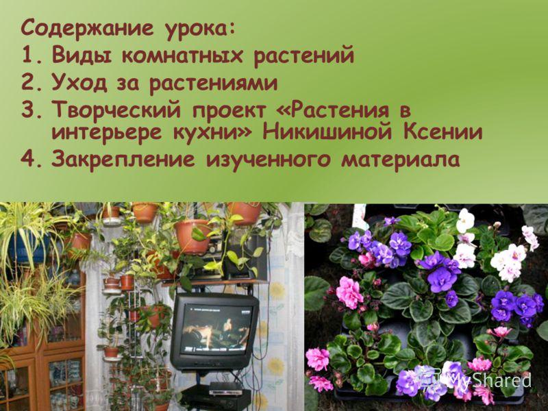 Содержание урока: 1.Виды комнатных растений 2.Уход за растениями 3.Творческий проект «Растения в интерьере кухни» Никишиной Ксении 4.Закрепление изученного материала