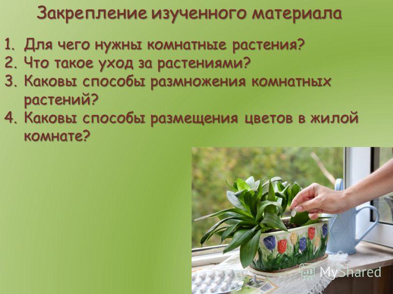Закрепление изученного материала 1.Для чего нужны комнатные растения? 2.Что такое уход за растениями? 3.Каковы способы размножения комнатных растений? 4.Каковы способы размещения цветов в жилой комнате?