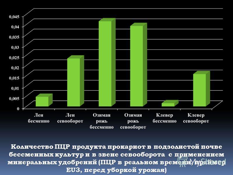 Количество ПЦР продукта прокариот в подзолистой почве бессменных культур и в звене севооборота с применением минеральных удобрений (ПЦР в реальном времени, праймер EU3, перед уборкой урожая)
