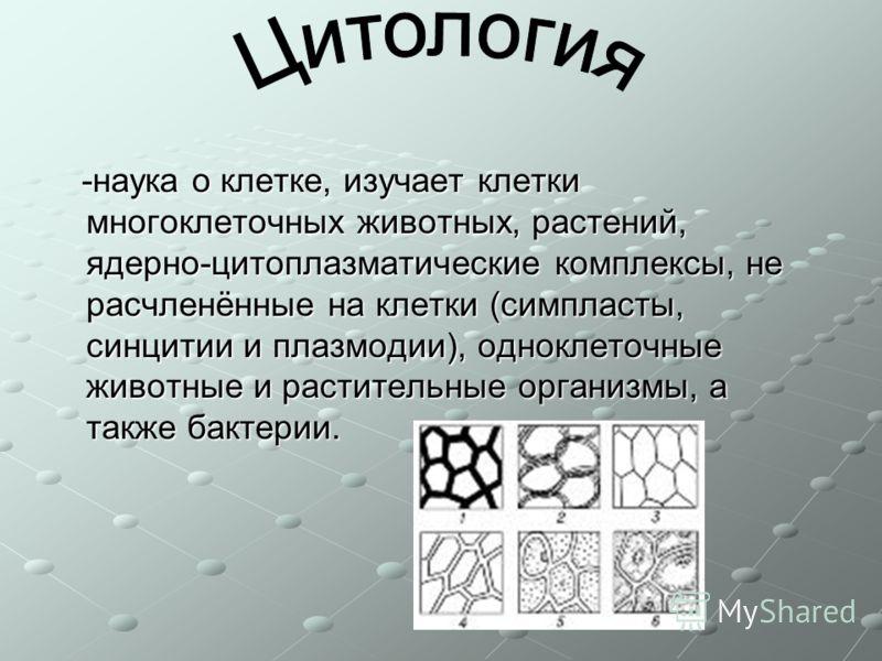 -наука о клетке, изучает клетки многоклеточных животных, растений, ядерно-цитоплазматические комплексы, не расчленённые на клетки (симпласты, синцитии и плазмодии), одноклеточные животные и растительные организмы, а также бактерии. -наука о клетке, и