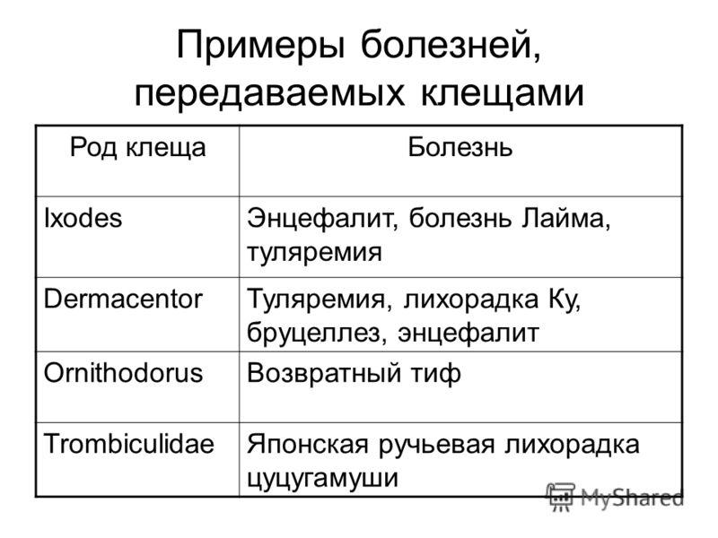 Примеры болезней, передаваемых клещами Род клещаБолезнь IxоdesЭнцефалит, болезнь Лайма, туляремия DermacentorТуляремия, лихорадка Ку, бруцеллез, энцефалит OrnithodorusВозвратный тиф TrombiculidaeЯпонская ручьевая лихорадка цуцугамуши