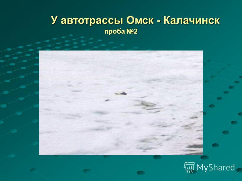 У автотрассы Омск - Калачинск проба 2 У автотрассы Омск - Калачинск проба 2