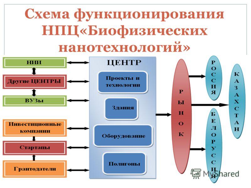 Схема функционирования НПЦ«Биофизических нанотехнологий» НТ
