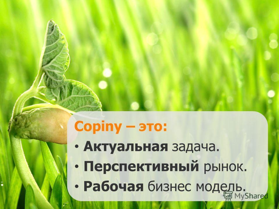 Copiny – это: Актуальная задача. Перспективный рынок. Рабочая бизнес модель.