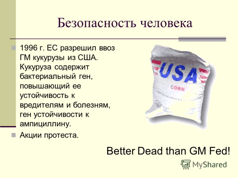 Безопасность человека 1996 г. ЕС разрешил ввоз ГМ кукурузы из США. Кукуруза содержит бактериальный ген, повышающий ее устойчивость к вредителям и болезням, ген устойчивости к ампициллину. Акции протеста. Better Dead than GM Fed!