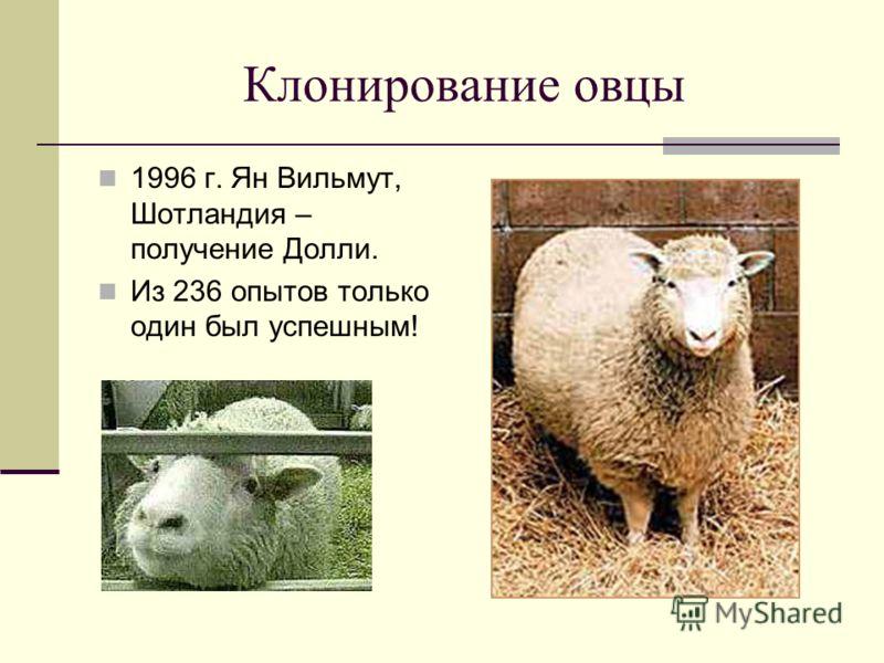 Клонирование овцы 1996 г. Ян Вильмут, Шотландия – получение Долли. Из 236 опытов только один был успешным!