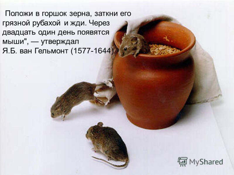 Положи в горшок зерна, заткни его грязной рубахой и жди. Через двадцать один день появятся мыши, утверждал Я.Б. ван Гельмонт (1577-1644).