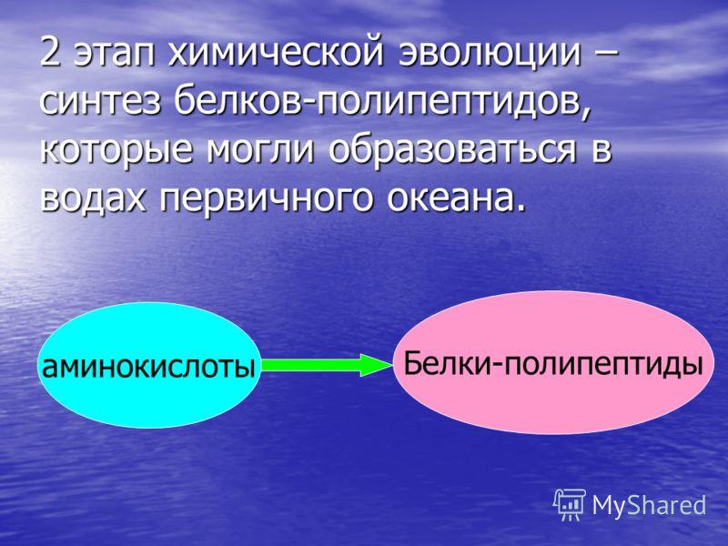 2 этап химической эволюции – синтез белков-полипептидов, которые могли образоваться в водах первичного океана. аминокислоты Белки-полипептиды