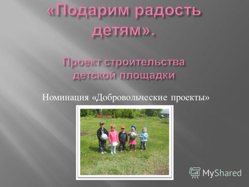 Номинация « Добровольческие проекты »
