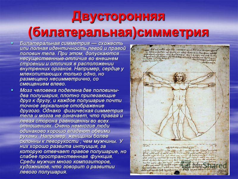 Двусторонняя (билатеральная)симметрия Билатера́льная симме́трия схожесть или полная идентичность левой и правой половин тела. При этом, допускаются несущественные отличия во внешнем строении и отличия в расположении внутренних органов. Например, серд