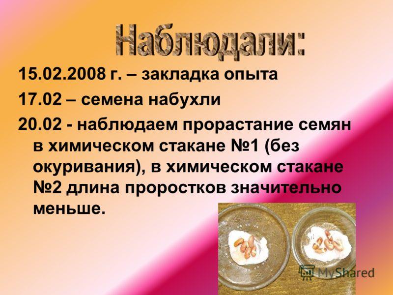 15.02.2008 г. – закладка опыта 17.02 – семена набухли 20.02 - наблюдаем прорастание семян в химическом стакане 1 (без окуривания), в химическом стакане 2 длина проростков значительно меньше.