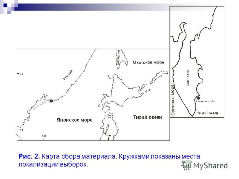 Рис. 2. Карта сбора материала. Кружками показаны места локализации выборок.