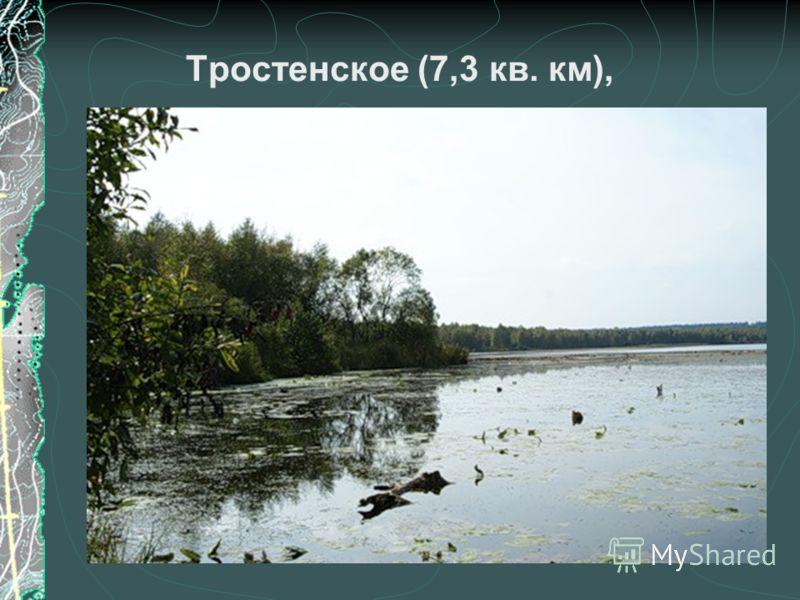 Тростенское (7,3 кв. км),