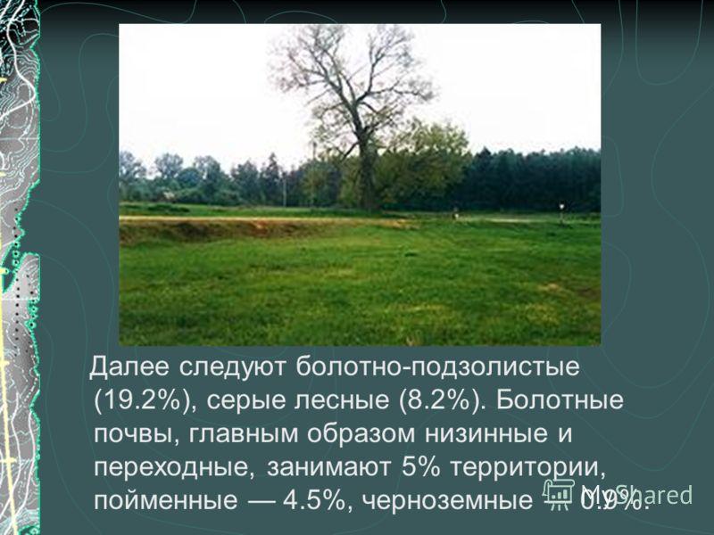 Далее следуют болотно-подзолистые (19.2%), серые лесные (8.2%). Болотные почвы, главным образом низинные и переходные, занимают 5% территории, пойменные 4.5%, черноземные 0.9%.