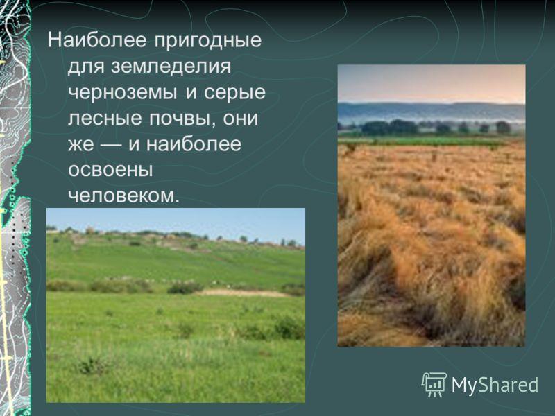 Наиболее пригодные для земледелия черноземы и серые лесные почвы, они же и наиболее освоены человеком.