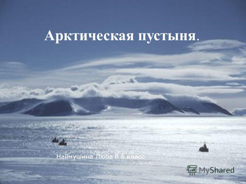 Арктическая пустыня. Наймушина Люба 8 б класс