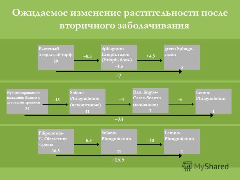 Культивированное низинное болото с луговыми травами 24 Solano- Phragmitetum (некошенные) 11 Lemno- Phragmitetum 1 Ran. lingua- Carex-болото (кошенное) 7 –13 –4–6 –23 Filipendula- C. Oleraceum -травы 16.5 Solano- Phragmitetum 11 –5.5 Lemno- Phragmitet