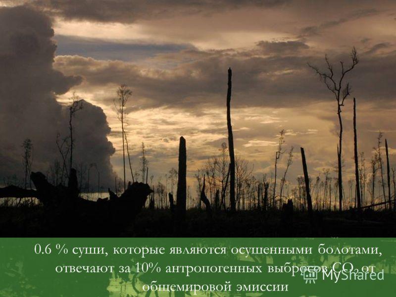 0.6 % суши, которые являются осушенными болотами, отвечают за 10% антропогенных выбросов CO 2 от общемировой эмиссии