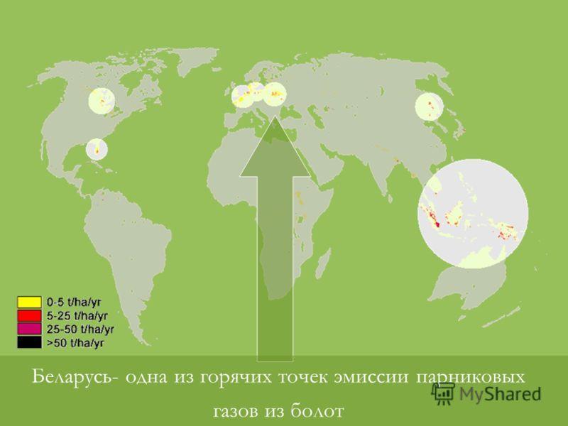 Беларусь- одна из горячих точек эмиссии парниковых газов из болот