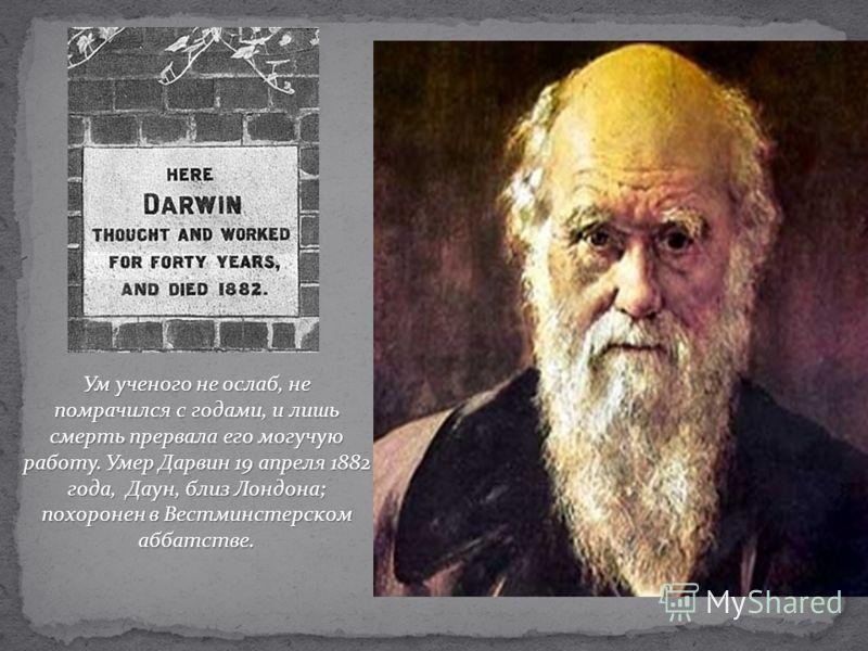 Ум ученого не ослаб, не помрачился с годами, и лишь смерть прервала его могучую работу. Умер Дарвин 19 апреля 1882 года, Даун, близ Лондона; похоронен в Вестминстерском аббатстве.