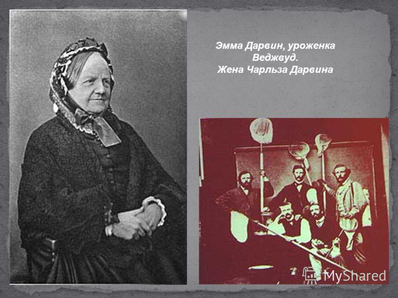 Эмма Дарвин, уроженка Веджвуд. Жена Чарльза Дарвина