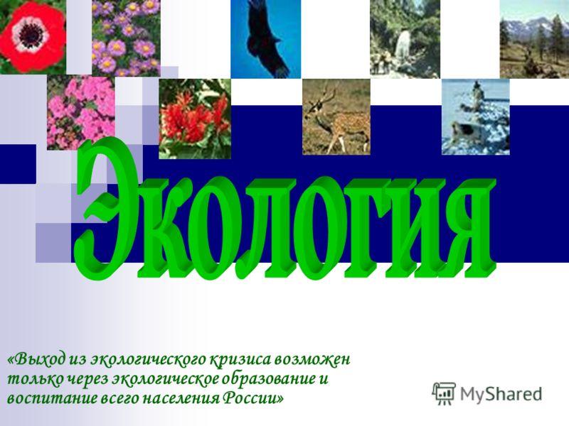 «Выход из экологического кризиса возможен только через экологическое образование и воспитание всего населения России»