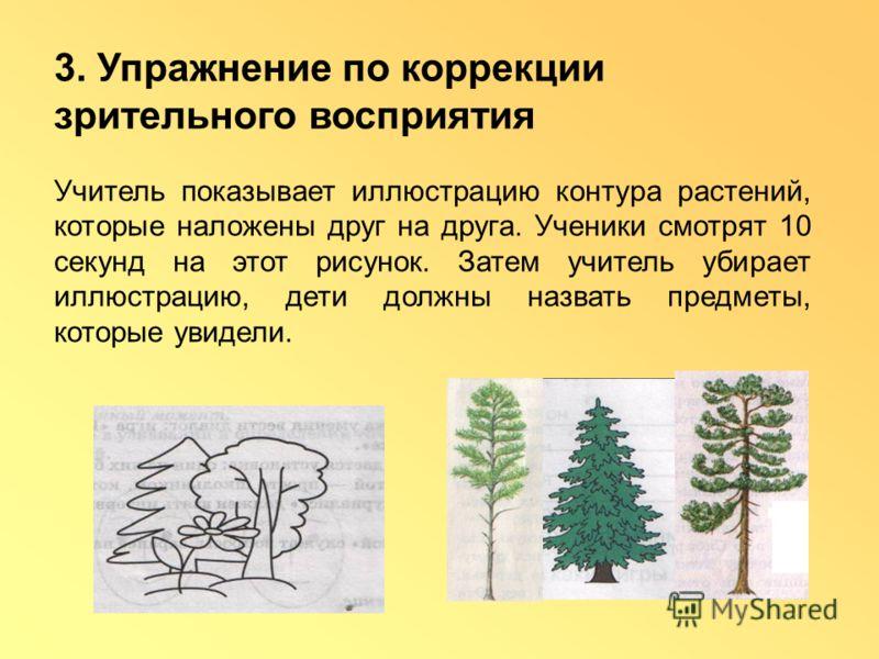 3. Упражнение по коррекции зрительного восприятия Учитель показывает иллюстрацию контура растений, которые наложены друг на друга. Ученики смотрят 10 секунд на этот рисунок. Затем учитель убирает иллюстрацию, дети должны назвать предметы, которые уви