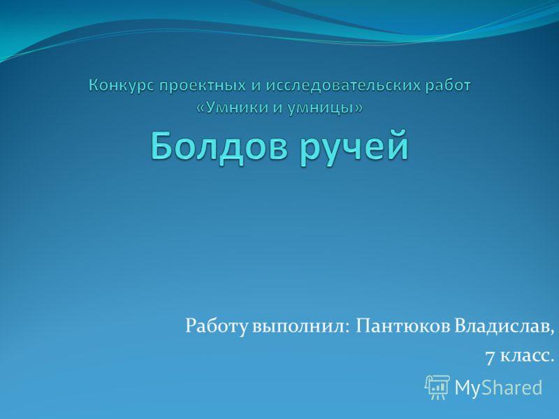 Работу выполнил: Пантюков Владислав, 7 класс.