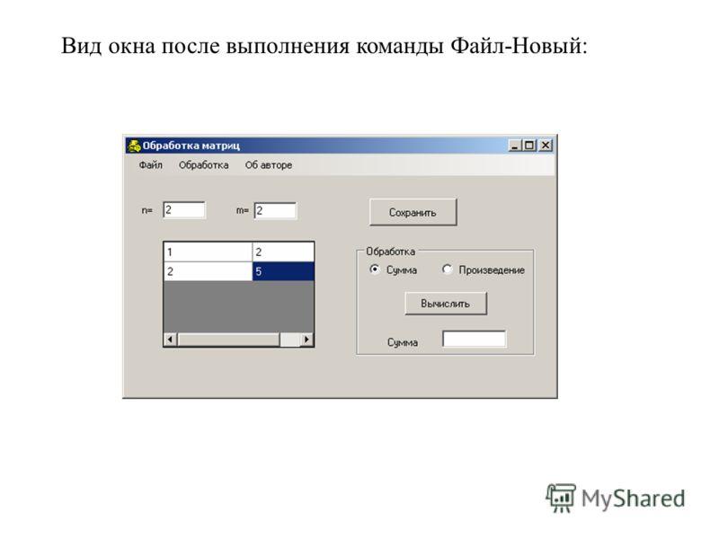 Вид окна после выполнения команды Файл-Новый: