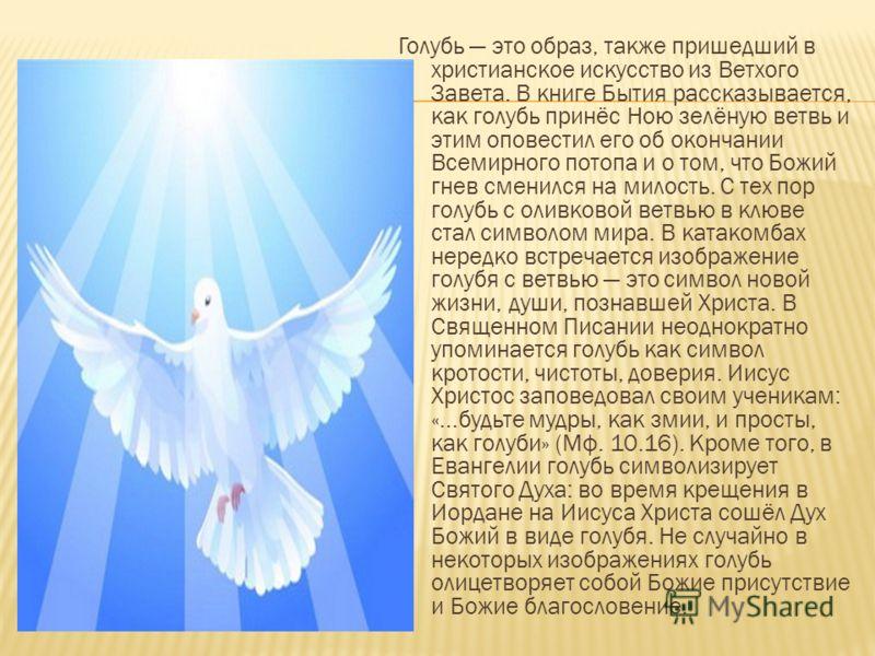 Голубь это образ, также пришедший в христианское искусство из Ветхого Завета. В книге Бытия рассказывается, как голубь принёс Ною зелёную ветвь и этим оповестил его об окончании Всемирного потопа и о том, что Божий гнев сменился на милость. С тех пор