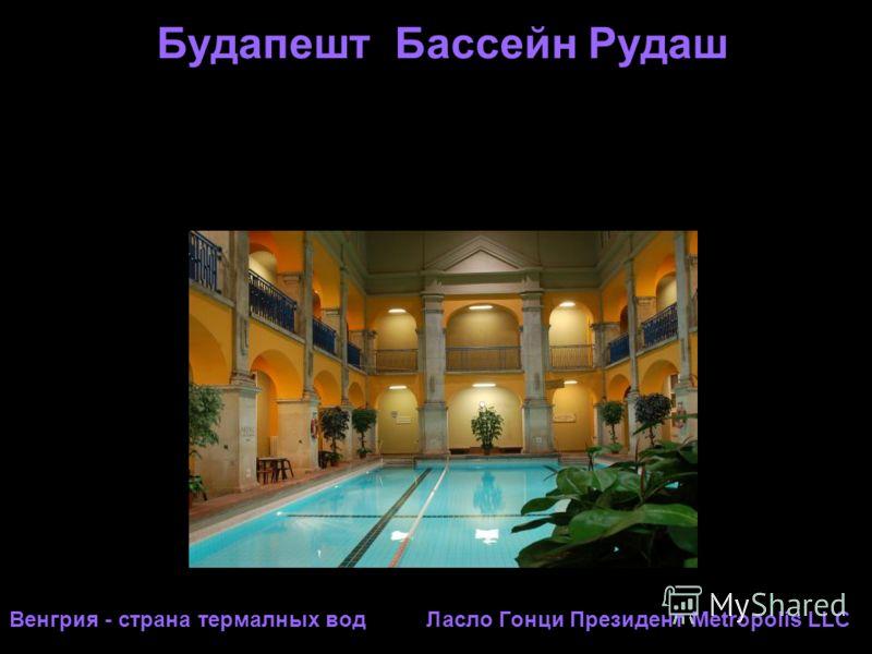 Будапешт Бассейн Рудаш Венгрия - страна термалных вод Ласло Гонци Президент Metropolis LLC