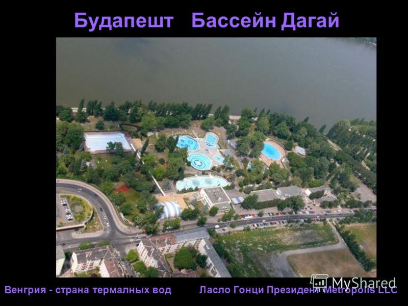 Будапешт Бассейн Дагай Венгрия - страна термалных вод Ласло Гонци Президент Metropolis LLC