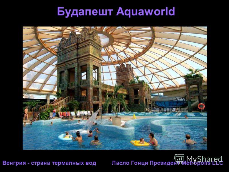 Будапешт Аquaworld Венгрия - страна термалных вод Ласло Гонци Президент Metropolis LLC