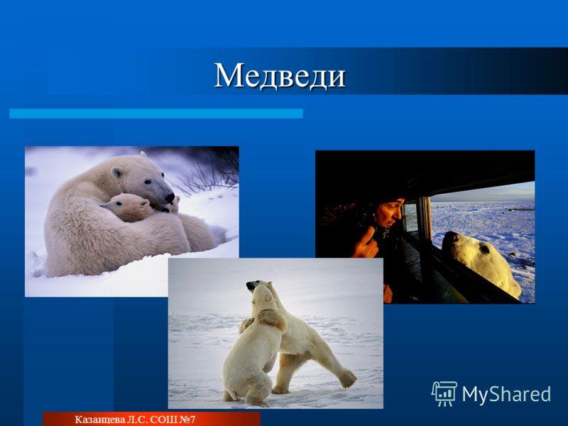 Казанцева Л.С. СОШ 7 Медведи