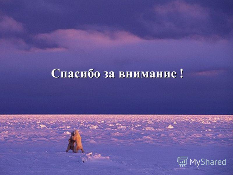 Казанцева Л.С. СОШ 14 Спасибо за внимание !