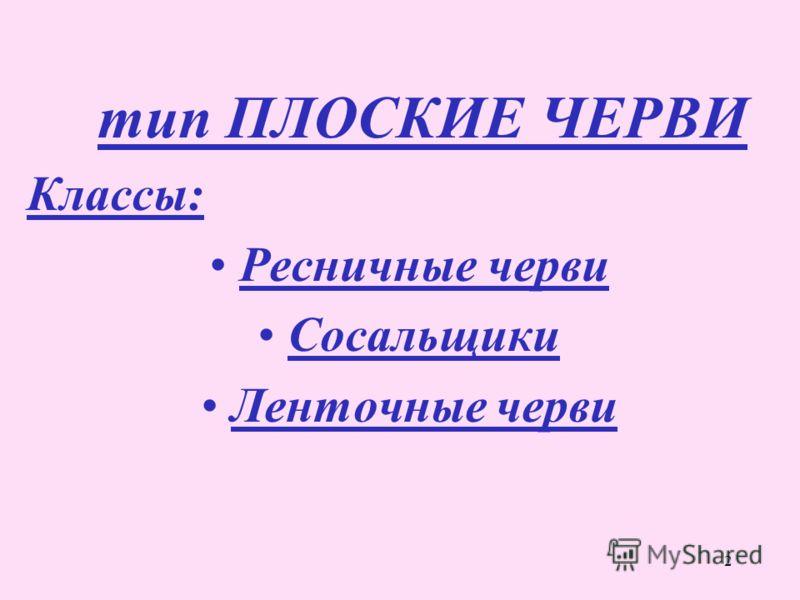 2 тип ПЛОСКИЕ ЧЕРВИ Классы: Ресничные черви Сосальщики Ленточные черви