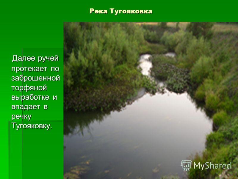 Река Тугояковка Далее ручей протекает по заброшенной торфяной выработке и впадает в речку Тугояковку. Далее ручей протекает по заброшенной торфяной выработке и впадает в речку Тугояковку.
