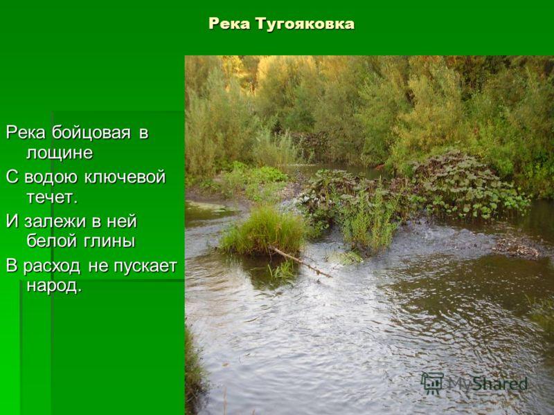 Река Тугояковка Река бойцовая в лощине С водою ключевой течет. И залежи в ней белой глины В расход не пускает народ.