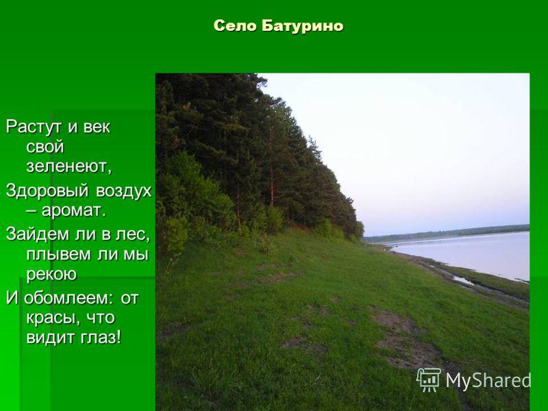 Село Батурино Растут и век свой зеленеют, Здоровый воздух – аромат. Зайдем ли в лес, плывем ли мы рекою И обомлеем: от красы, что видит глаз!
