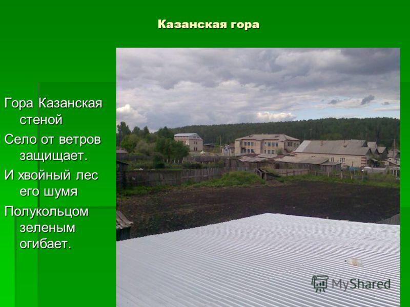 Казанская гора Гора Казанская стеной Село от ветров защищает. И хвойный лес его шумя Полукольцом зеленым огибает.