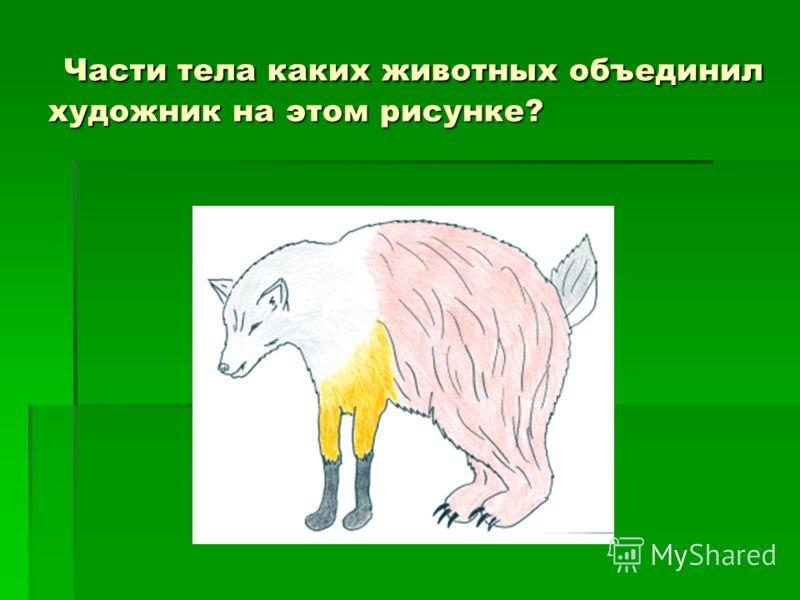 Части тела каких животных объединил художник на этом рисунке? Части тела каких животных объединил художник на этом рисунке?