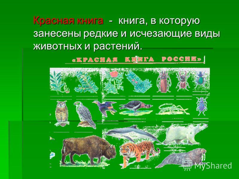 Красная книга - книга, в которую занесены редкие и исчезающие виды животных и растений. Красная книга - книга, в которую занесены редкие и исчезающие виды животных и растений.