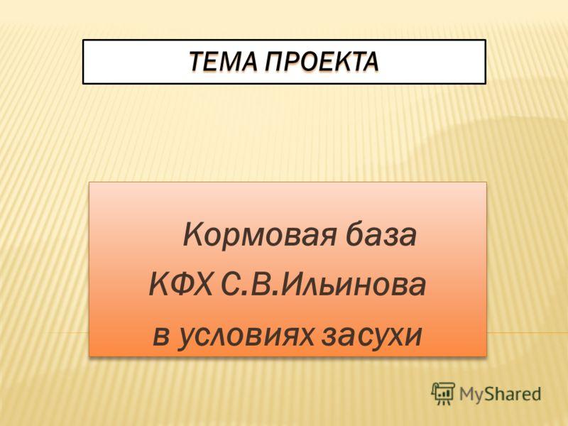 ТЕМА ПРОЕКТА Кормовая база КФХ С.В.Ильинова в условиях засухи Кормовая база КФХ С.В.Ильинова в условиях засухи