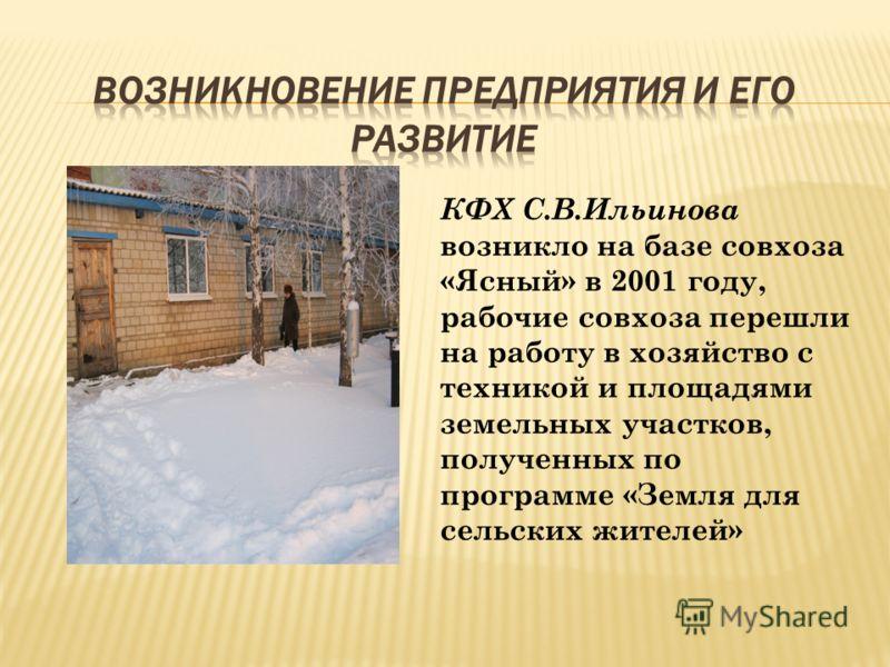 КФХ С.В.Ильинова возникло на базе совхоза «Ясный» в 2001 году, рабочие совхоза перешли на работу в хозяйство с техникой и площадями земельных участков, полученных по программе «Земля для сельских жителей»