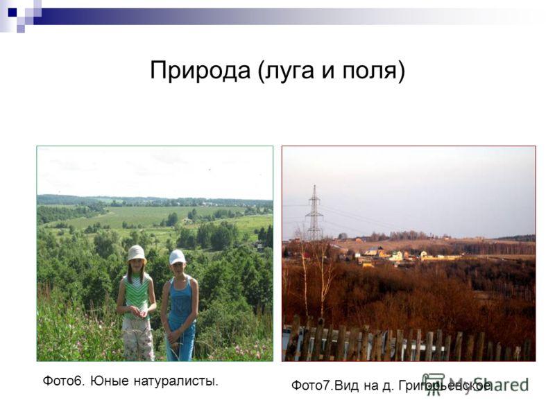 Природа (луга и поля) Фото6. Юные натуралисты. Фото7.Вид на д. Григорьевское